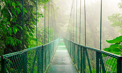 Unleash your inner adventurer on our Puntarenas, Costa Rica tours image 2