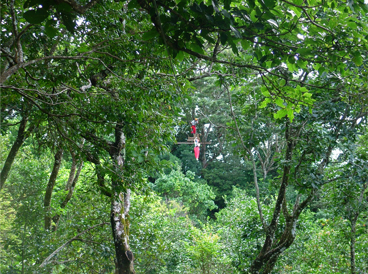 Costa Rica Superman zip line  tour in Finca Daniel adventure park image 8