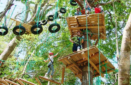 Mega Mix Adventure: Tarzan swing, rappelling, high ropes zip-lining, and other adrenaline-filled activities in one go image 2