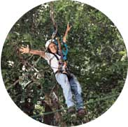 Mega Mix Adventure: Tarzan swing, rappelling, high ropes zip-lining, and other adrenaline-filled activities in one go image 10